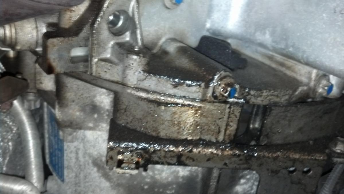 How to identify a OIL PAN GASKET leaking or a OIL FILTER
