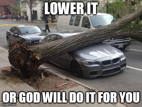 BMW M5 crushed by tree