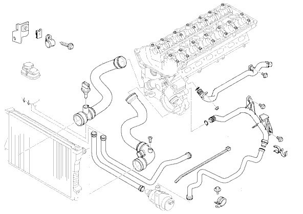 Power steering pump as well 2002 Nissan Altima 2 5 Engine Head Gasket in addition Cooling System Diagram 2001 Bmw 325 likewise 2004 Bmw 525i Parts Diagram together with  on 2004 bmw 325i expansion tank replacement