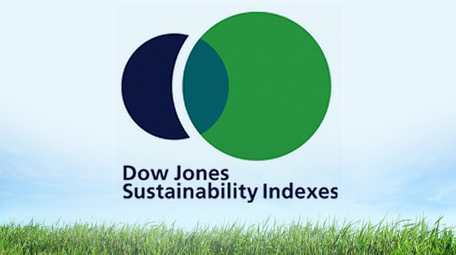 BMW Sector Leader in Dow Jones Sustainability Index