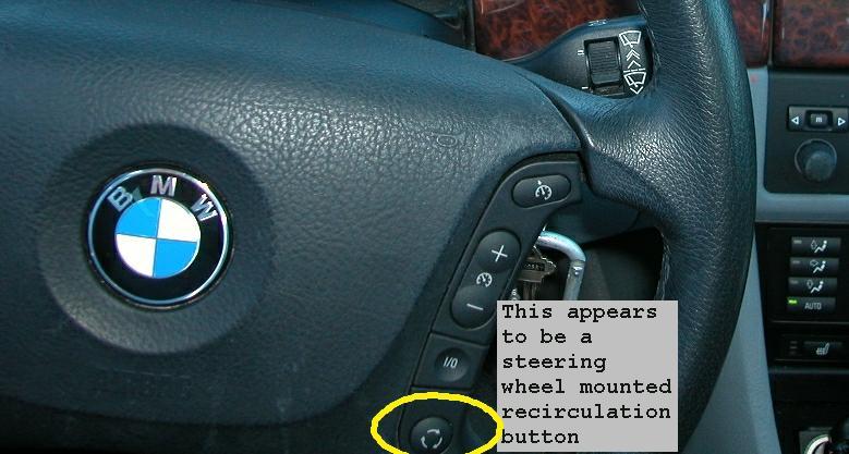 Individual Climate A//C RECIRC Panel Button BMW E39 E53 525i 530i 540i X5