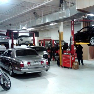 BMW Shop Repairs- Looks like all the lifts are full.