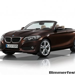 2015-bmw-2-series-convertible-070