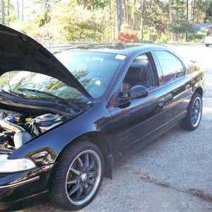 The car! It looks different under the hood now. Strut Bar and new CAI.
