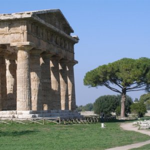 Paestum-Ancient greek city prob founded about 650 BC